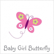 baby girl butterfly theme