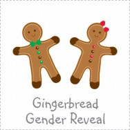 Gingerbread Gender Reveal Baby Shower Invitations