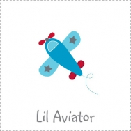 little aviator plane airplane boy birthday theme