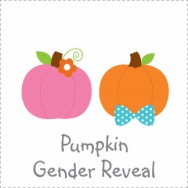 Pumpkin Gender Reveal Invitations
