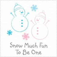 Snow Much Fun To Be One Birthday Invitations