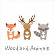 Woodland Animals Theme Sparkle And Shine Birthday Theme BaByQ Baby Shower  ...