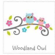 Woodland Owl Baby Shower